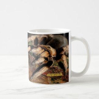 Tarentule 4 mug