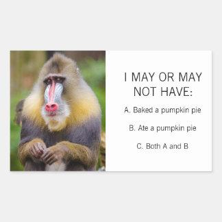 Tarte de citrouille coloré drôle de photo de singe sticker rectangulaire