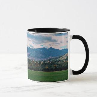 Tasse d'Adirondack