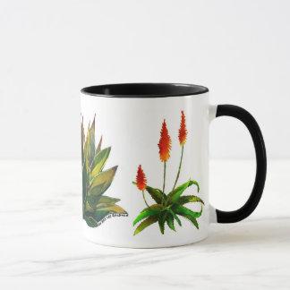 Tasse d'agave et de café d'aloès