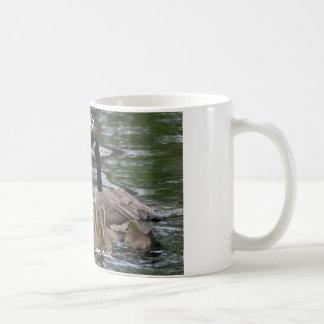 tasse de café avec la famille des oies