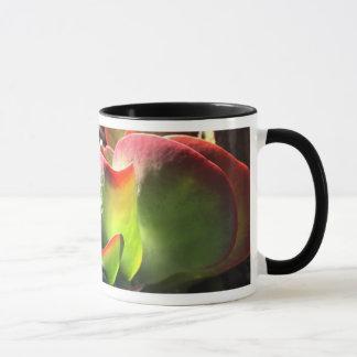 Tasse de café de plante de palette