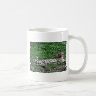Tasse de café de repos de guépard