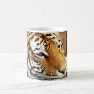 Tasse de café Morphing de tigre sibérien