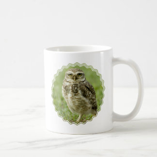 Tasse de café vigilante de hibou
