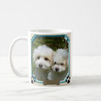 Tasse de Cavachon, chien customisé