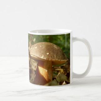 Tasse de champignon de petit pain de penny