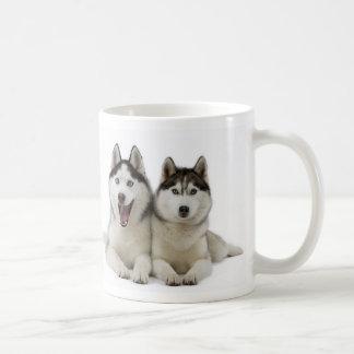 Tasse de chien de traîneau sibérien