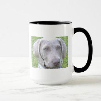 Tasse de chien de Weimaraner
