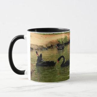 Tasse de cygne noir