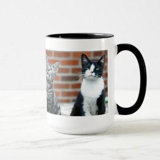 Tasse de deux chats