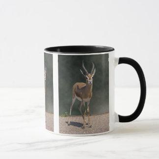 Tasse de gazelle de Dorcas