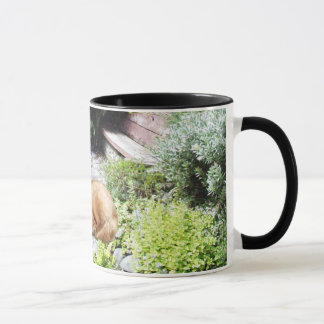 Tasse de golden retriever
