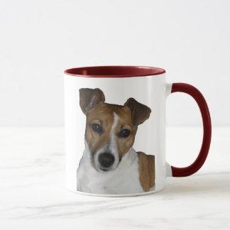Tasse de Jack Russell terriers