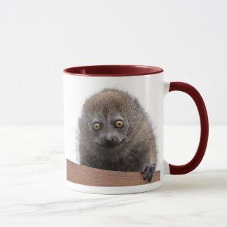 Tasse de lémur de bébé