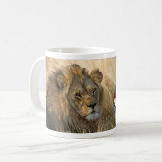 TASSE DE LION DE L'ECOSSE DE COFFRET