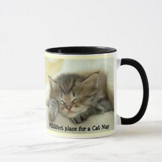 Tasse de petit somme de chat