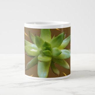 Tasse de plante succulent naturelle, brune et d'or