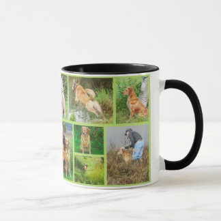 Tasse d'or de champ de Retriver