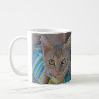 Tasse douce de chaton