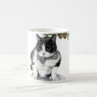 Tasse : Felix, le chat, campant en août
