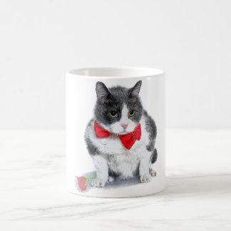 Tasse :  Felix, le chat, en février