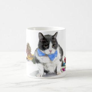 tasse : Felix, le chat, en septembre