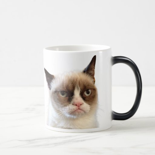 Tasse grincheuse originale de chat
