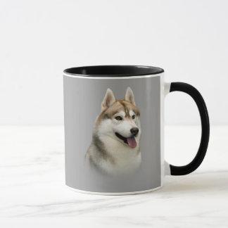 Tasse magnifique de chien de traîneau sibérien