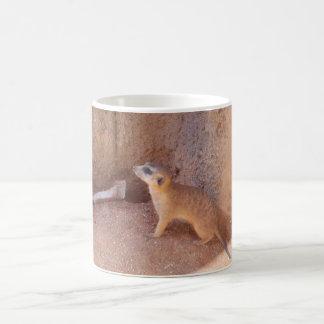 Tasse mignonne de Meerkat