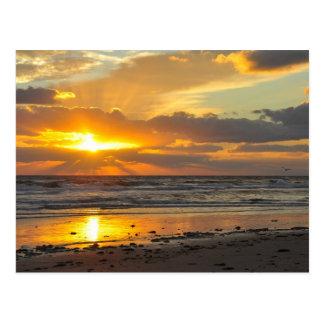 Tasse pittoresque de lever de soleil de plage de carte postale