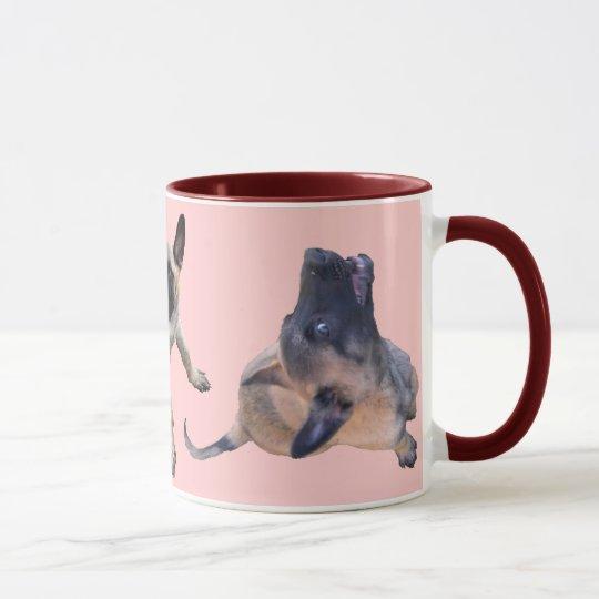 tasse puppy malinois rose