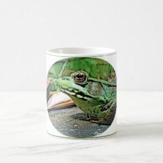 TASSE réfléchie de grenouille