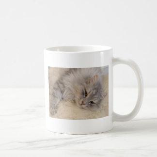Tasse sibérienne de chat