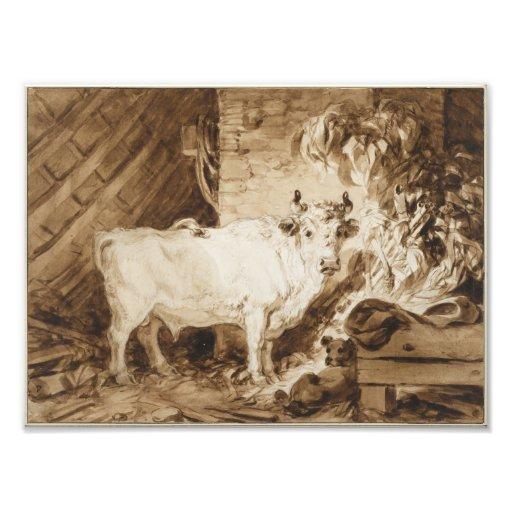 Taureau et chien blancs dans une écurie par Fragon Photo