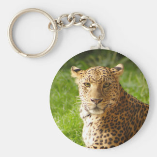 TecBoy.net Keychain - léopard Porte-clé