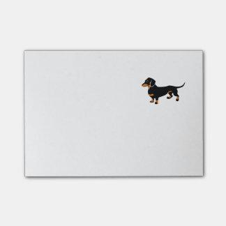Teckel mignon - chien de Doxie