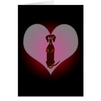 Teckel Sidney ma carte de coeur