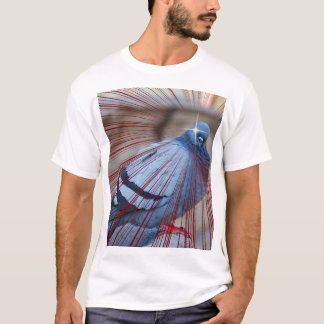 *teleports derrière l'u* t-shirt