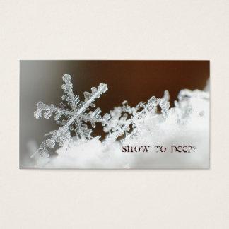 Tempête de neige de 2009 cartes de visite