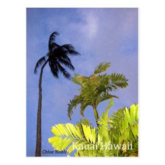 Tempête venant - Kauai, Hawaï Carte Postale