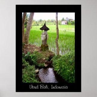 Temple Ubud Bali de gisement de riz de l affiche