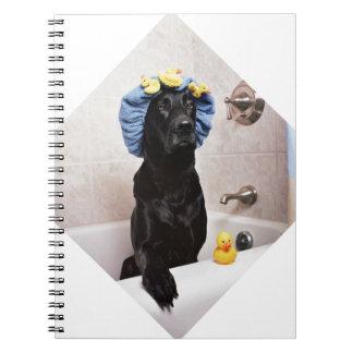 Temps drôle de Bath de laboratoire de chien noir Carnet