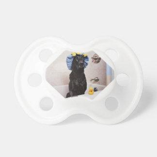 Temps drôle de Bath de laboratoire de chien noir Tétine