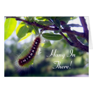 Tente Caterpillar de forêt 1 carte de voeux