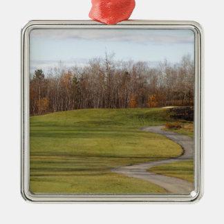 Terrain de golf ornement carré argenté