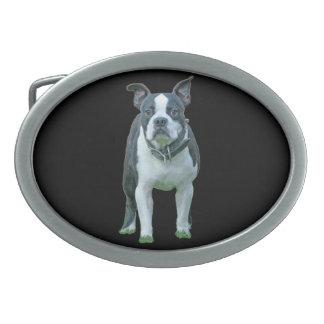 Terrier 1B de Boston Boucle De Ceinture Ovale