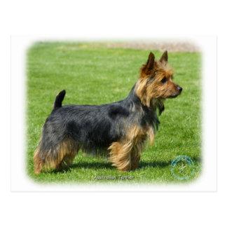 Terrier australien 9R044D-62 Carte Postale
