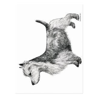 Terrier australien carte postale