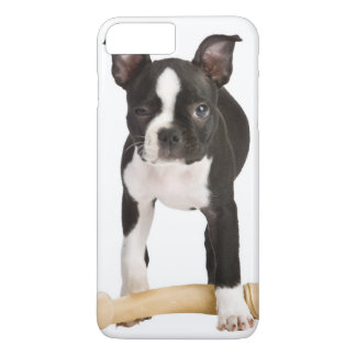 Terrier de Boston gardant l'os twisty Coque iPhone 7 Plus
